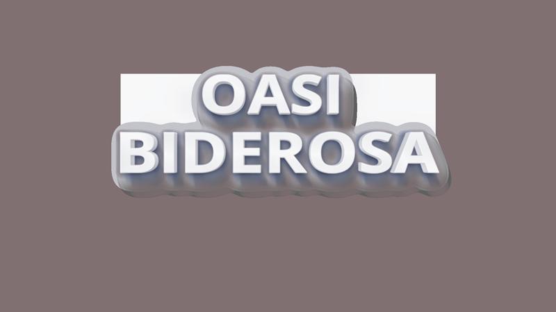 logo-3d-biderosa